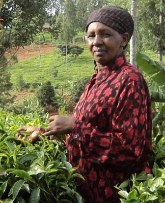 Irene Wanjiku