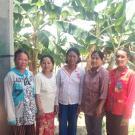 Savai's Group