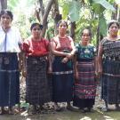 Yoxaja 2 Group