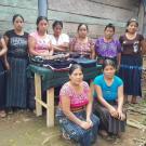Yoxaja Sector Campo Group