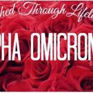 Alpha Omicron Pi- Gamma Chi