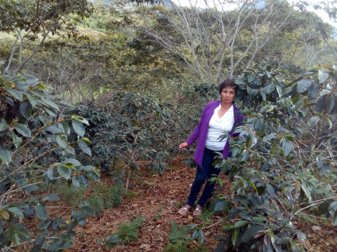 photo of Consuelo