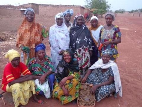 photo of Djiguiya Group