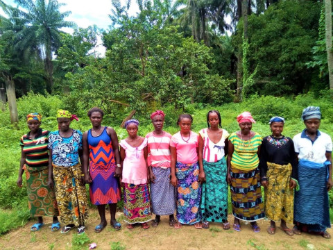 photo of Mabinty's Female Farmers Group