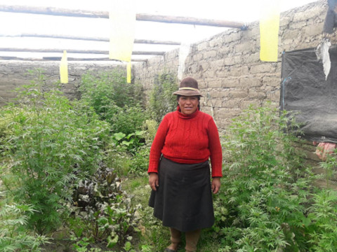 photo of Herminia Juana