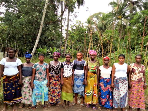 photo of Isata's Female Farmers Group