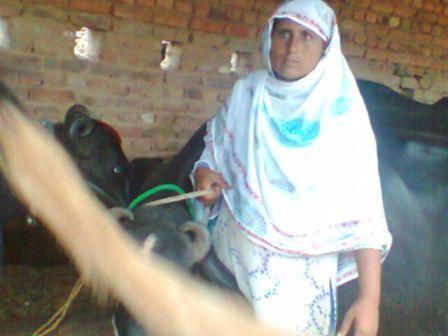 Sughran