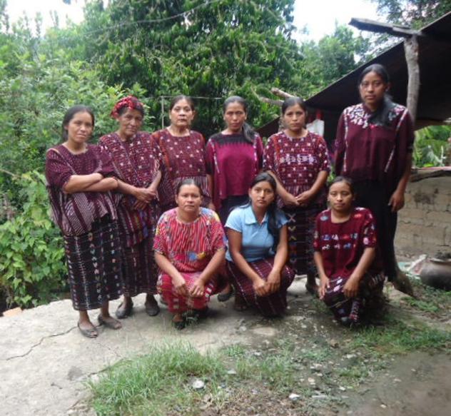 Villa Flores Group