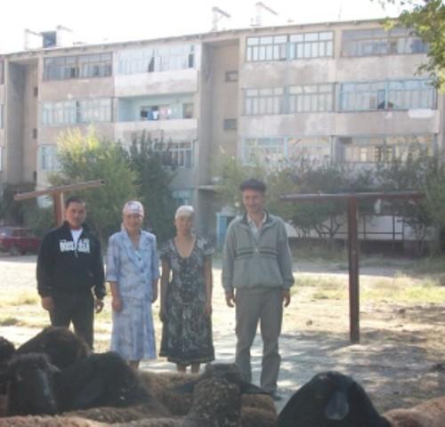 Farida's Group