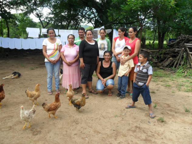 Panales No 2 Group