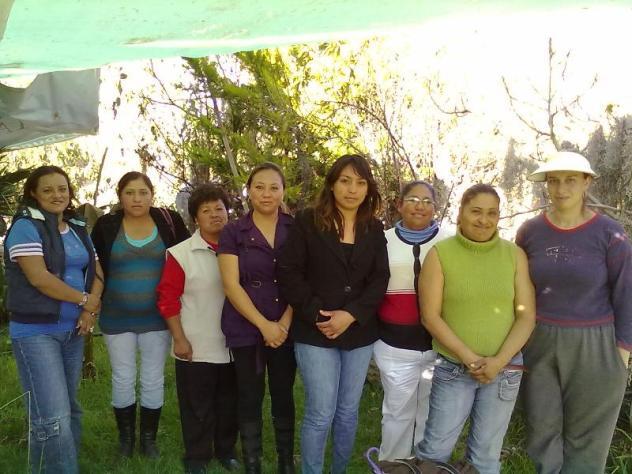 Luna Nueva 1 Group
