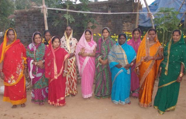 Maa Tarini Shg (G) Group