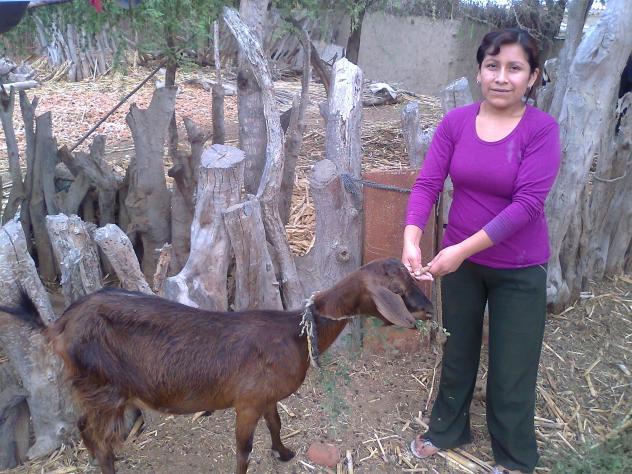 Maria Yeny