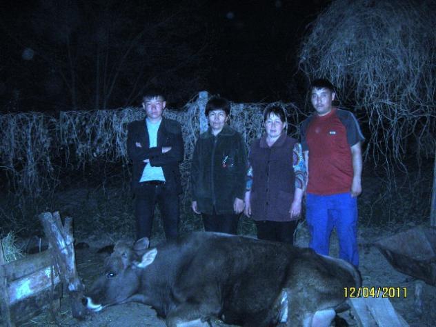 Nurjan's Group